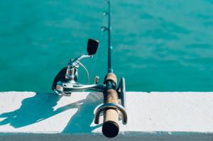 caza_pesca_1